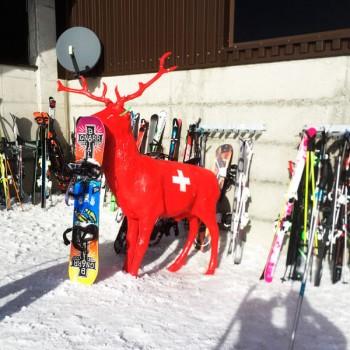At border of Swiss